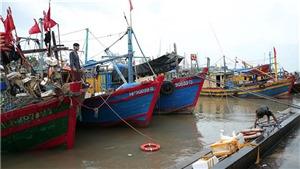Bão số 2 sức gió mạnh cấp 8, giật cấp 10, cách bờ biển các tỉnh Thái Bình-Nghệ An khoảng 120km