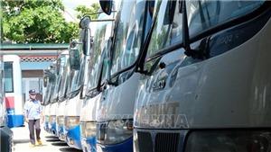 Nghiên cứu đề án vận hành 10 tuyến buýt mới bằng xe chạy điện ở Hà Nội