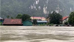 Quảng Bình: Hơn 95 nghìn ngôi nhà bị ngập, hơn 194 nghìn hộ dân mất điện