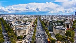 Thủ đô Paris triển khai dự án 'phủ xanh' đại lộ Champs-Elysees nổi tiếng