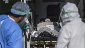 Dịch Covid-19 đến sáng 31/1: Thế giới có 103.107.949 ca bệnh, 2.227.732 ca tử vong