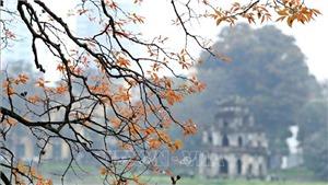Hãng tin Đức DPA giới thiệu một số điểm du lịch đặc sắc ở Việt Nam