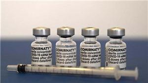 Chính phủ đồng ý mua bổ sung gần 20 triệu liều vaccine Pfizer
