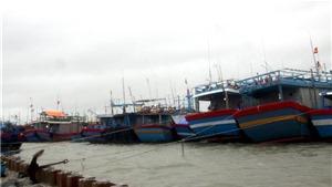 Bão số 5 suy yếu thành áp thấp nhiệt đới trên vùng biển Đà Nẵng đến Bình Định