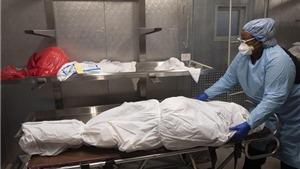 Dịch Covid-19: Số ca tử vong tại Mỹ vượt 700.000 người