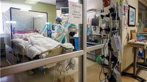 Chữa lành những 'vết thương tinh thần' trong đại dịch
