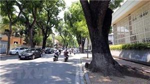 Miền Đông Nam Bộ tiếp tục nắng nóng, có nơi lên đến 36 độ C