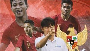 HLV Shin Tae-yong tạm gác tình bạn với HLV Park vì trận đấu Việt Nam vs Indonesia