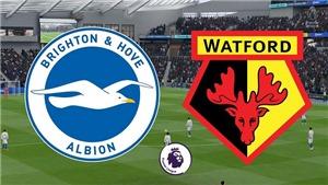 Soi kèo nhà cái Brighton vs Watford. K+, K+PM trực tiếp bóng đá Ngoại hạng Anh (23h30, 21/08)