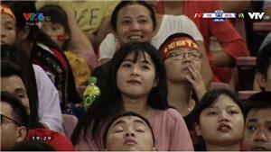 Bất ngờ về thân thế fan nữ xinh đẹp gây sốt ở trận Việt Nam - Afghanistan