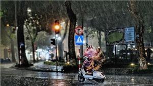 Đêm 23/5, vùng núi Bắc Bộ cục bộ có mưa vừa, mưa to
