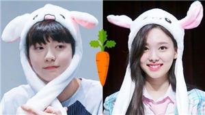 Loạt sao K-pop gắn liền với hình ảnh thỏ dễ thương