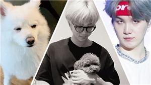 Lý do bức ảnh mừng sinh nhật RM BTS gây xôn xao