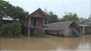 Bão số 6 suy yếu: Đắk Lắk vẫn bị ngập hơn 300 ngôi nhà