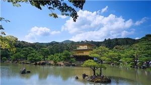 Kinh nghiệm du lịch phượt Nhật Bản cực hữu ích