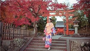 Á hậu Thanh Tú dịu dàng diện Kimono giữa rừng phong lá đỏ