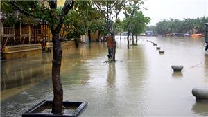 Áp thấp nhiệt đới, không khí lạnh gây mưa dông