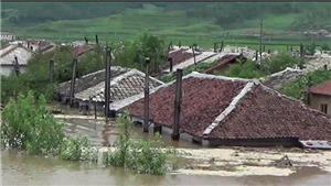 Hàng nghìn người dân Triều Tiên sơ tán khẩn cấp tránh lũ