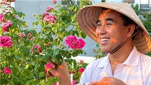Trọng Tấn trồng dưa, Quyền Linh chăm hoa những ngày giãn cách phòng dịch Covid-19