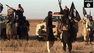 Hơn 1.300 dân thường Iraq và Syria thiệt mạng trong các cuộc không kích của liên quân do Mỹ đứng đầu