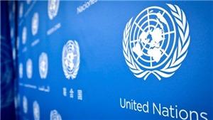 Việt Nam với Hội đồng Bảo an Liên hợp quốc: LHQ bầu chọn ủy viên không thường trực HĐBA