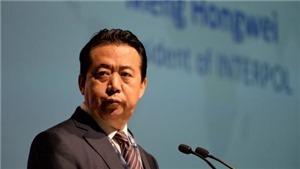 Thông tin của Interpol về vụ việc Chủ tịch Mạnh Hoàng Vĩ 'nghi mất tích'