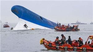 Thảm họa chìm phà Sewol ở Hàn Quốc: Di ảnh các nạn nhân được chuyển khỏi Gwanghwamun