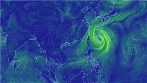 Bão Tapah suy yếu sau khi hoành hành tại Nhật Bản và Hàn Quốc