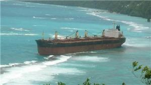 Cảnh báo thảm họa môi trường lớn tại vùng đá ngầm gần đảo san hô lớn nhất thế giới