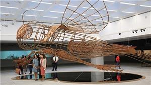 Chùm ảnh: Theo chân HLV Hoàng Anh Tuấn 'săn' dế mèn 'khổng lồ'