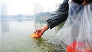 Chùm ảnh:  Muôn màu cách thả cá trong ngày Tết 'Ông Công, ông Táo'