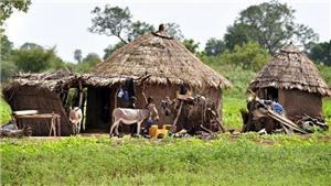 Thợ săn thuộc tộc người Dogon tại Mali sát hại 115 người Fulani