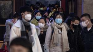 Đồ họa: Số ca mắc bệnh viêm phổi do virus corona trên thế giới tăng lên hơn 6.000
