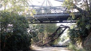 Italy: Hỏa hoạn làm hư hại cầu sắt nổi tiếng ở Rome