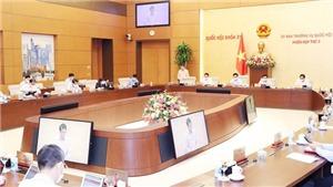 Sửa đổi luật để hoàn thiện môi trường pháp lý cho điện ảnh Việt phát triển