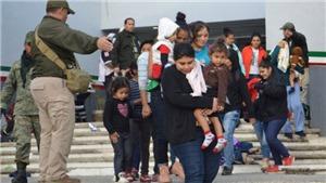 Guatemala giải cứu 126 người di cư bị nhốt trong một container chở hàng