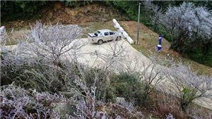Chùm ảnh: Băng tuyết trên đỉnh núi Phia Oắc, Cao Bằng