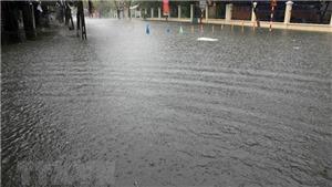 Mưa lớn tại Đà Nẵng: Thông báo cho gần 2.000 học sinh nghỉ học trong ngày 10/12 để đảm bảo an toàn