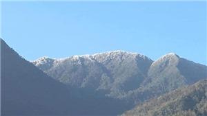 Xuất hiện băng giá tại hai huyện vùng cao Trạm Tấu và Mù Cang Chải