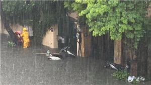 Dự báo áp thấp nhiệt đới mạnh lên thành bão, Bắc bộ mưa cực lớn