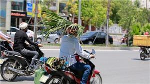 Người dân Hà Nội kháng cự với cái nắng kỷ lục bằng 'lá chắn di động'