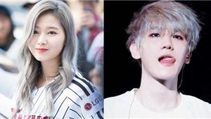 6 thần tượng đẹp 'điên đảo' với tóc xám: Jin BTS, Sana Twice...