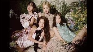 Blackpink đẹp xuất sắc trên tạp chí Vogue Hàn: 'Nàng thơ' của các thương hiệu nổi tiếng