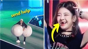 20 khoảnh khắc 'chết cười' của sao Kpop: BTS, Blackpink, ITZY, Red Velvet...