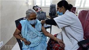 Một nghiên cứu chỉ ra vaccine nội địa của Ấn Độ có thể vô hiệu hóa đột biến kép