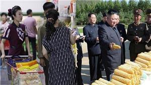Triều Tiên đối mặt với khủng hoảng lương thực trầm trọng nhất trong hơn 10 năm qua