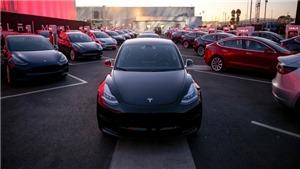 Tesla sa thải hàng nghìn nhân viên