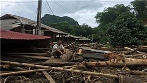 Thanh Hoá 3 người chết, 12 người mất tích do bão
