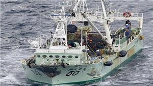 Danh tính 5 thủy thủ Việt Nam mất tích trong vụ chìm tàu ở ngoài khơi Nhật Bản