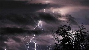 Một người tử vong do sét đánh khi trú mưa dưới tán cây